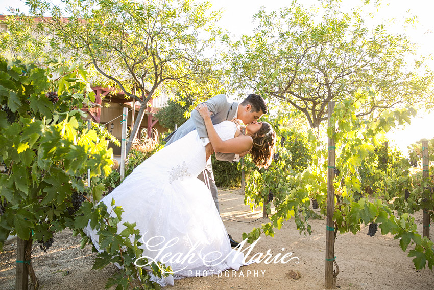 Myrna Marcus Wiens Family Cellars Winery Wedding Photographer Temecula Leah Marie